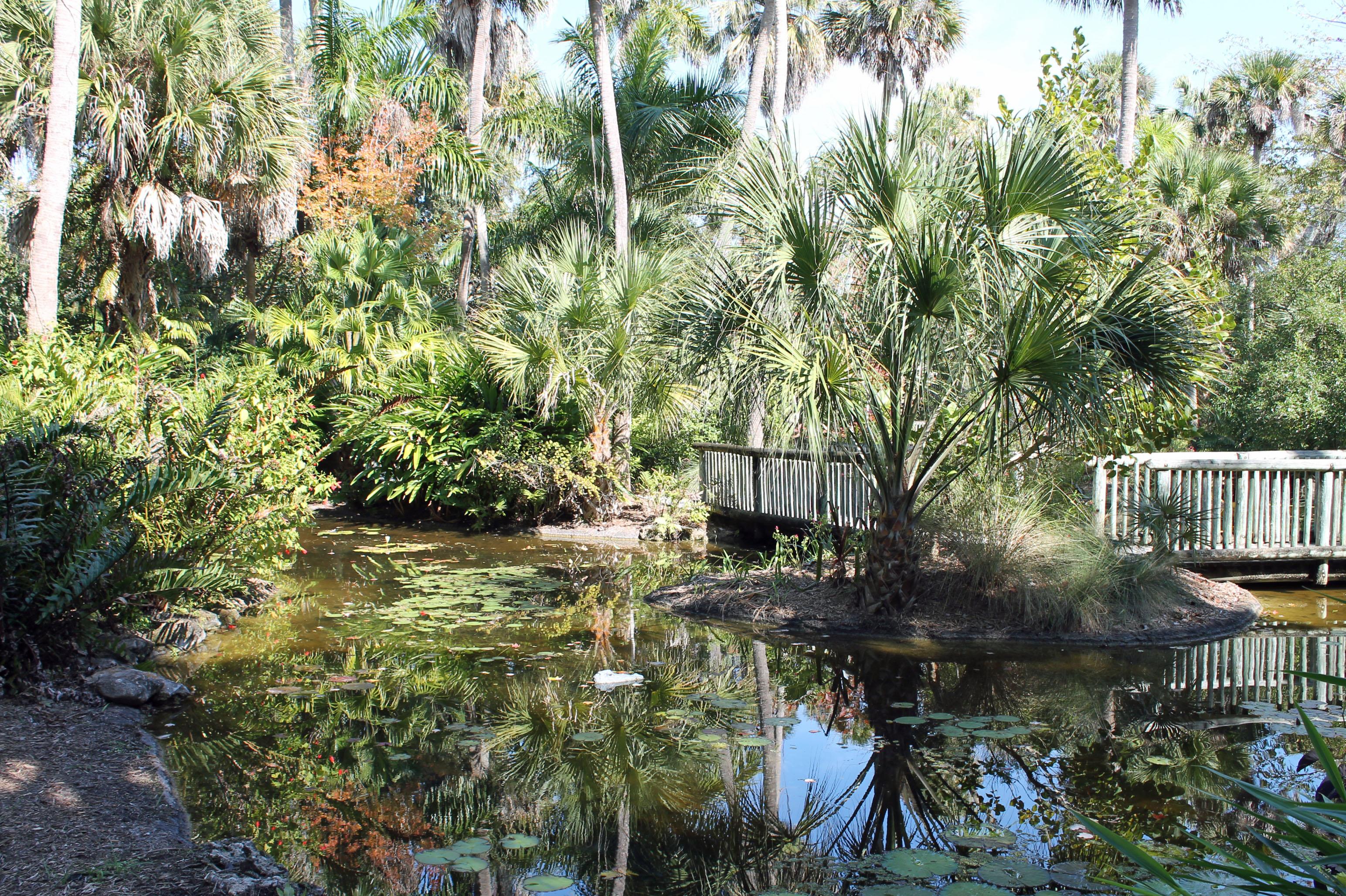 Central Florida Botanical Gardens Best Places To Take Photographs Near Orlando Central Florida