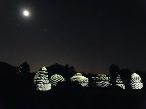 Topiary plants turn into moving objects at Longwood's Nightscape.