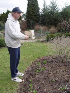 I fertilize my garden beds once a year in early spring with a granular organic fertilizer.