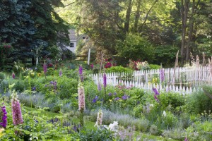 Brandywine Cottage is the home garden of author David Culp and Michael Alderfer.