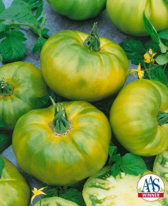 Tomato 'Chef's Choice Green' Credit: All-America Selections
