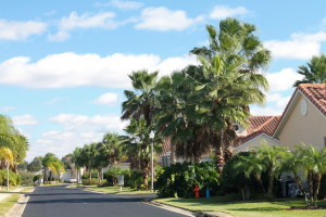 Here's the palm-lined street leading to Erin's Florida villa.