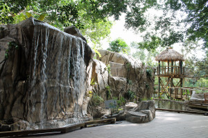 A waterfall is one feature of Selby Botanical Gardens children's garden.