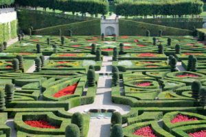 French plants are a lot like ours... except we don't do grand parterre gardens like this one at Chateau de Villandry.
