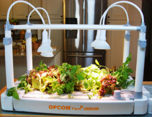 Millennials in particular are fueling a trend toward the indoor growing of edibles, using technology such as this new Opcom Farm GrowBox. Credit: Opcom Farm