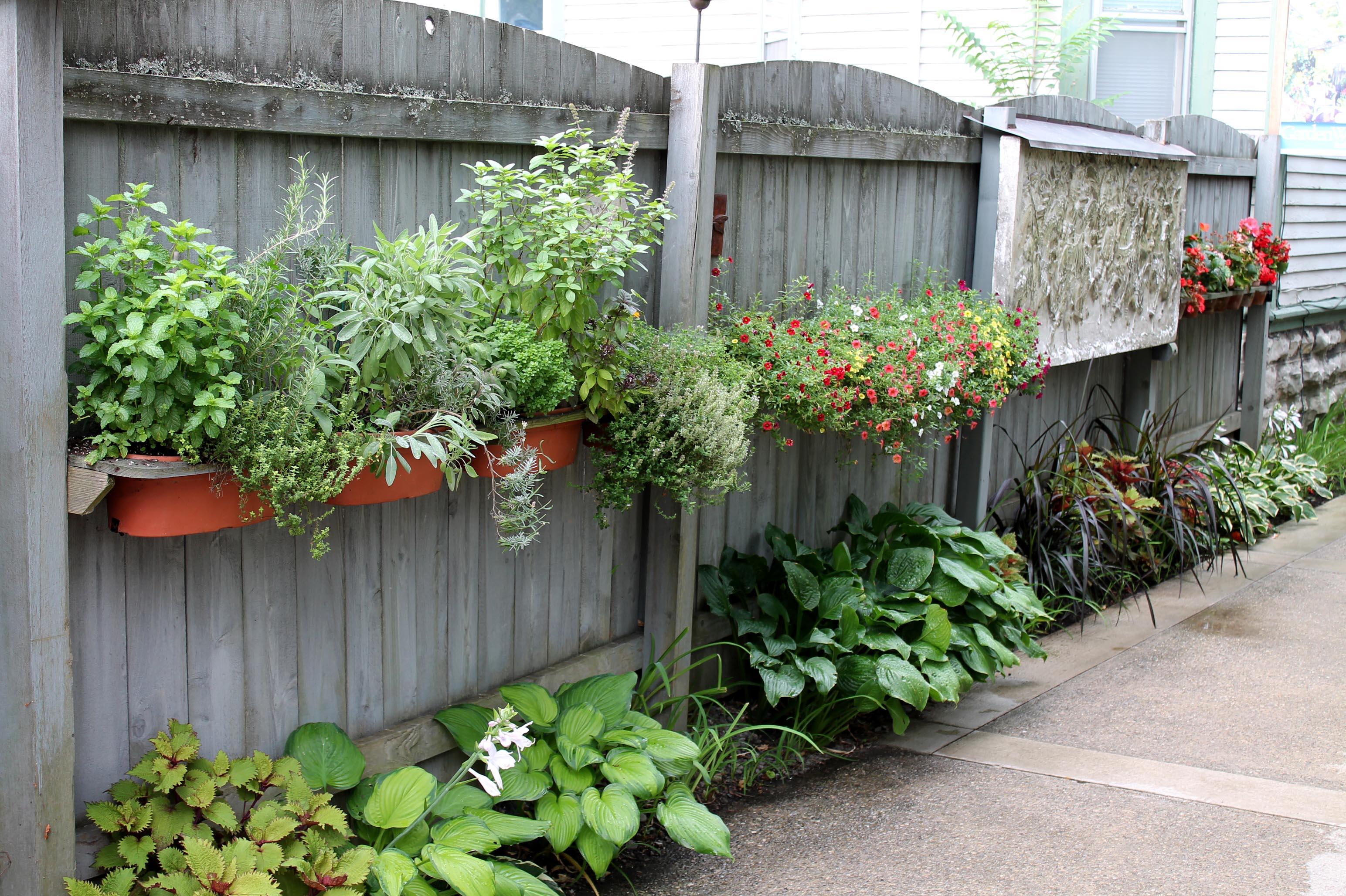 Garden Trends Of Garden Housecalls