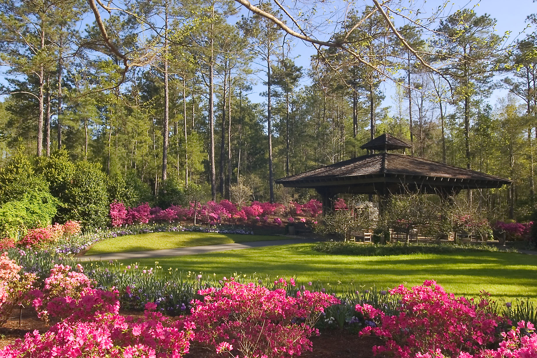 George 39 s talks and trips garden housecalls for Places to stay near callaway gardens