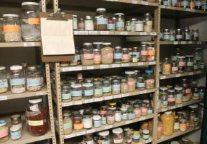 Heirloom seeds are stored in jars and sold worldwide.