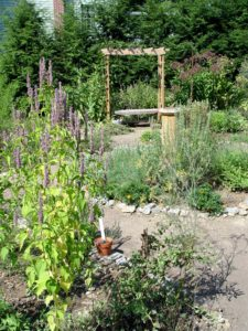 The herb demonstration garden at Landis Valley.