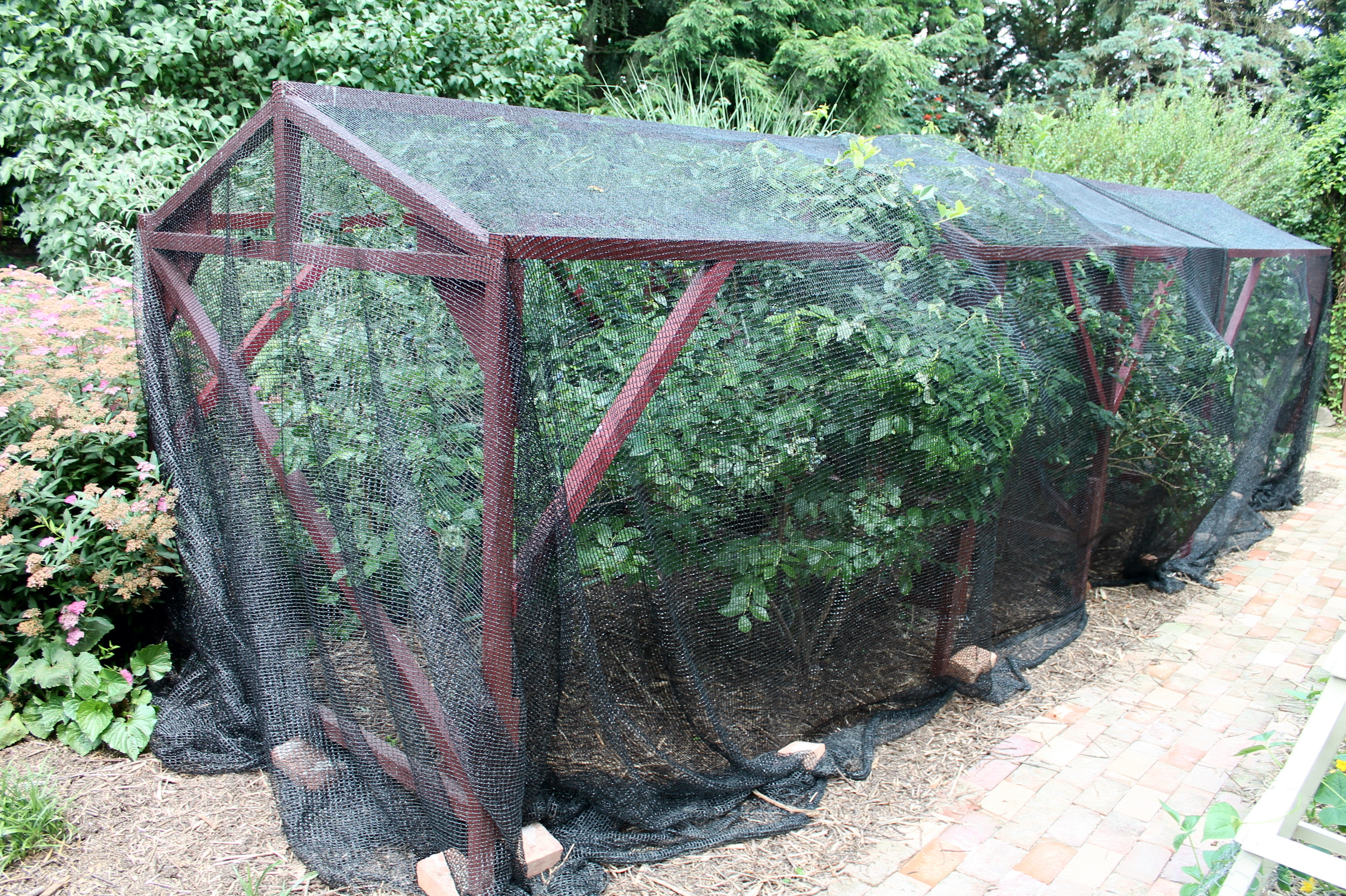 for netting garden anti net bird smart x