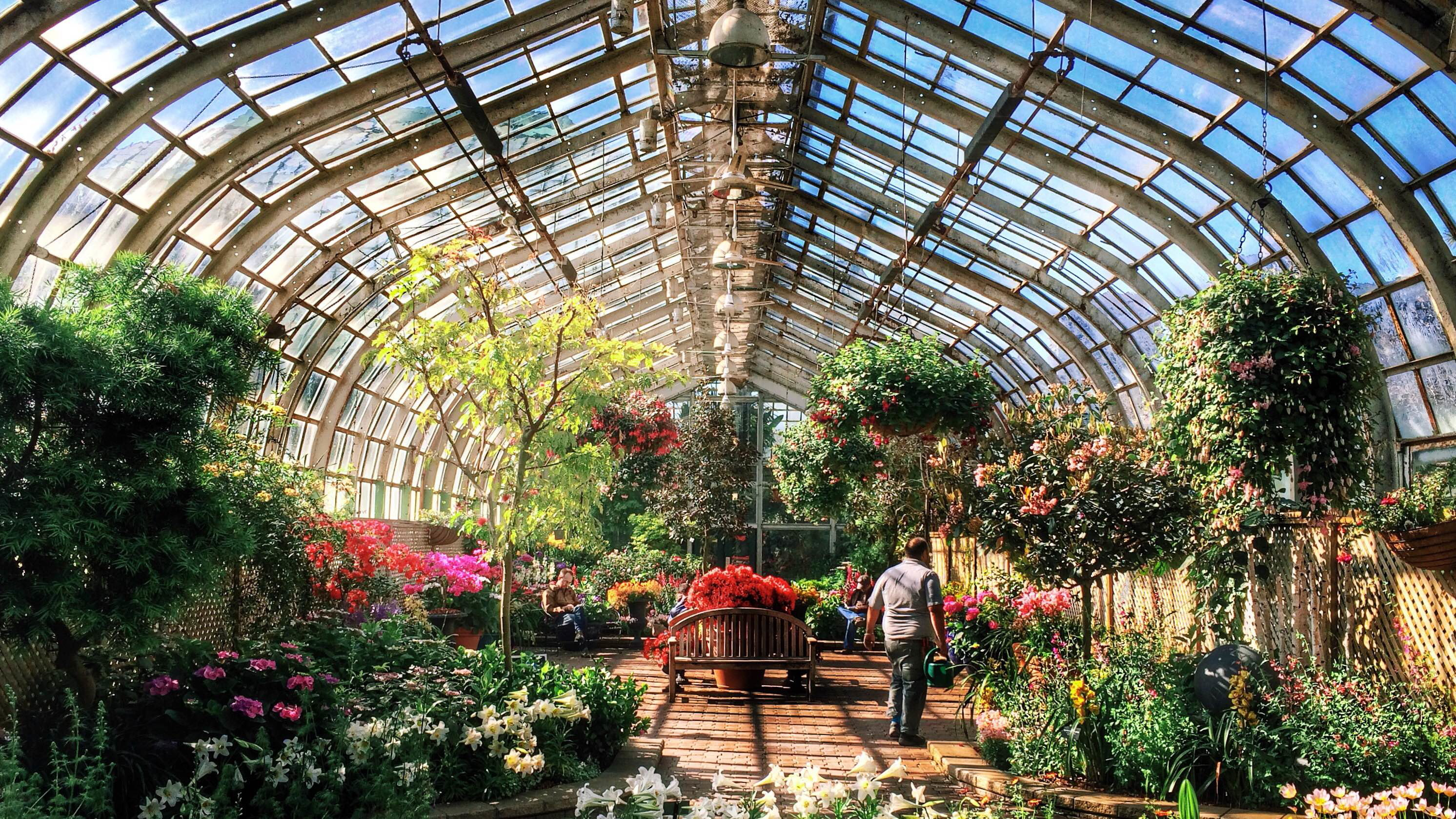 Garden Chicago: George's Talks And Trips